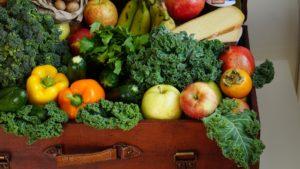 darmsanierung ernährung